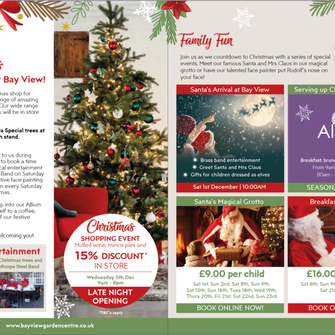 inside spread of christmas mailer